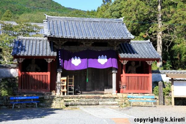 tsushima321